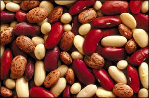 Assortment of mixed beans that are all good foods that lower cholesterol.
