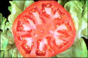 A slice of a juicy red tomato to help lower your cholesterol naturally.