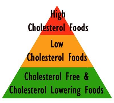 Cholesterol foods pyramids with sections of cholesterol free foods, low cholesterol foods and high cholesterol foods.