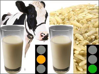 Soy milk and ricemilk are cholesterol free foods and on the list of low cholesterol foods.