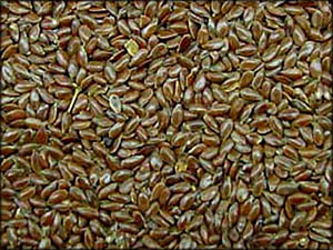 Foods to lower cholesterol: Lots of healthy flax seeds.