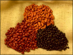 Artistic shot of beans in yelllow, red and black colors. Beans are excellent foods to lower cholesterol