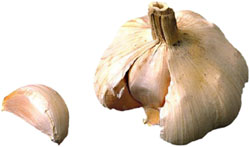 Picture of clove of garlic.