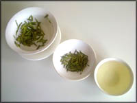 Good cholesterol foods and drinks: Bowls with green tea leaves.