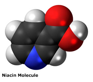 Niacin for cholesterol: 3D picture of niacin molecule.