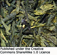Green tea is a great  cholesterol lowering supplement. Green tea leaves.