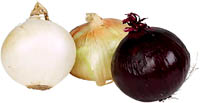 How to lower ldl cholesterol with onions and garlic. Three kinds of onions.