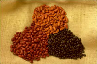 High fiber can be found in many vegetables and fruits. Picture of a mixed pile of beans.