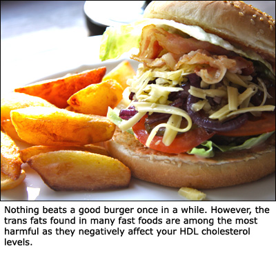 Fast food is typical foods high in cholesterol as it is very high in trans fats: Picture of a burger with fries.