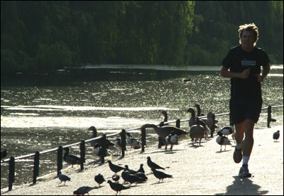 Man out jogging next to ducks.