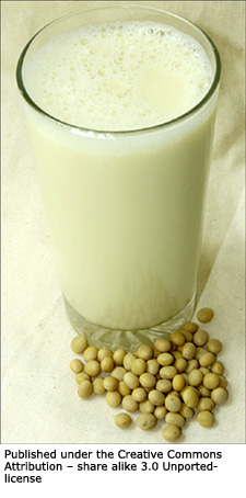 Soy milk and soy beans.