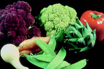 A mix of vegetables as cholesterol lowering foods
