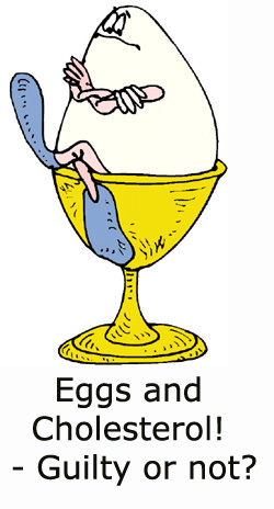 Funny egg drawing. Are eggs guilty of cholesterol or not? Find out here!