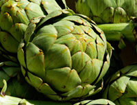 artichokes for lowering cholesterol levels.